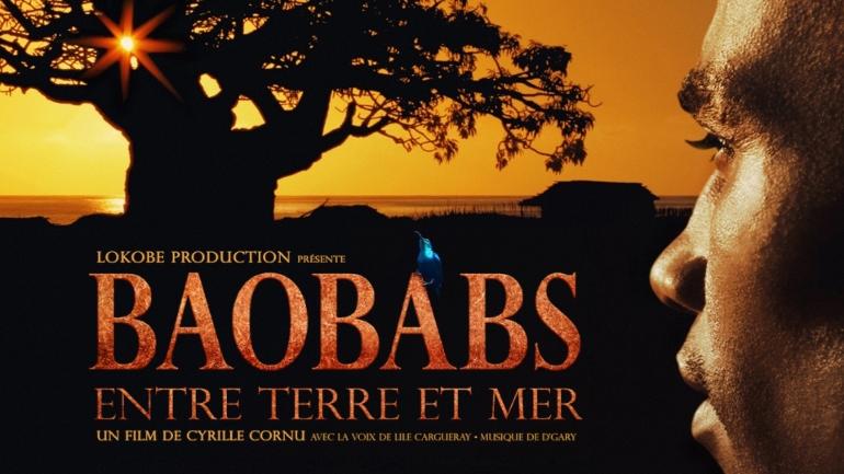 Baobabs entre Terre et ciel telaonne sous DAVINCI RESOLVE 11 par Jean michel Petit