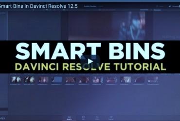 TUTORIAL DAVINCI RESOLVE 12.5 SMART BIN