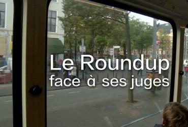 LE ROUNDUP FACE A SES JUSGES DAVINCI RESOLVE titre